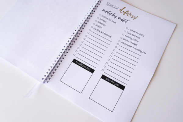 Special Delivery Pregnancy Planner Inside