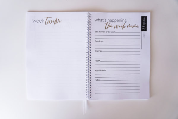 Week to Week Pregnancy Planner